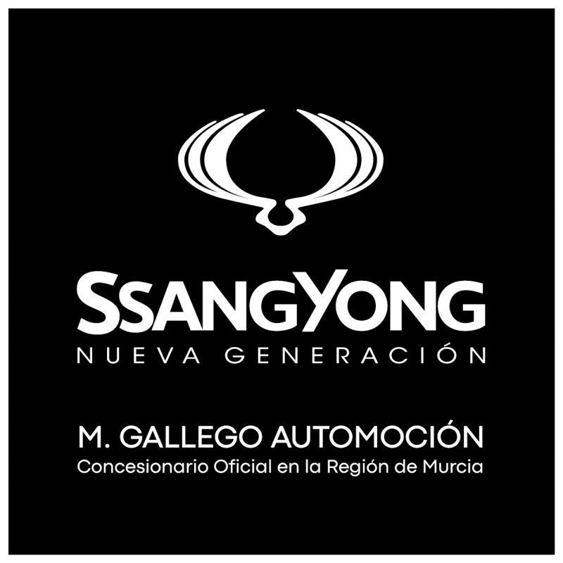 LOGO SSANGYONG + GRUPO-01
